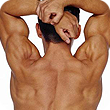 A muscular man's back with his hands over his head.
